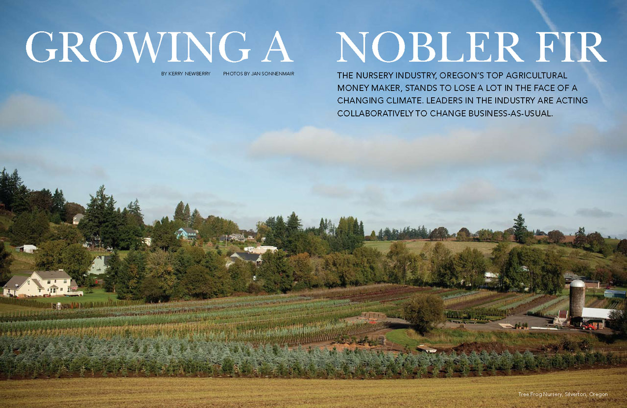 Growing a Nobler Fir: Nursery Farms – A Changing Industry
