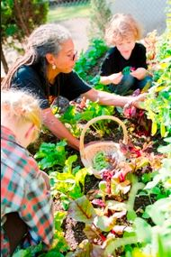 Powerful Medicine: A Garden Gives Portland's Native Community a Place to Call Home