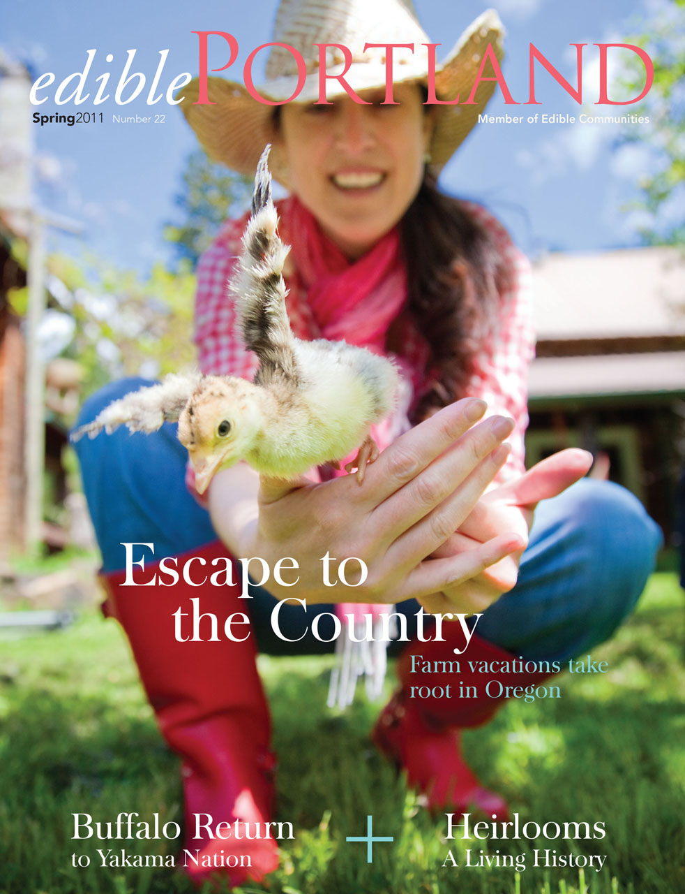 Escape to the Country: My Farm Vacation